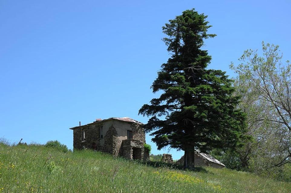 Calabria incontaminata: alla scoperta dell'Alta Valle del Tacina