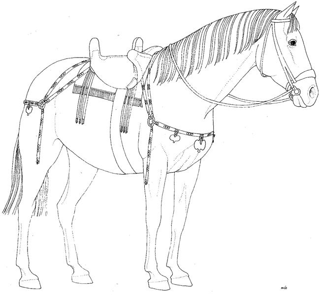 Cavallo a Pompei