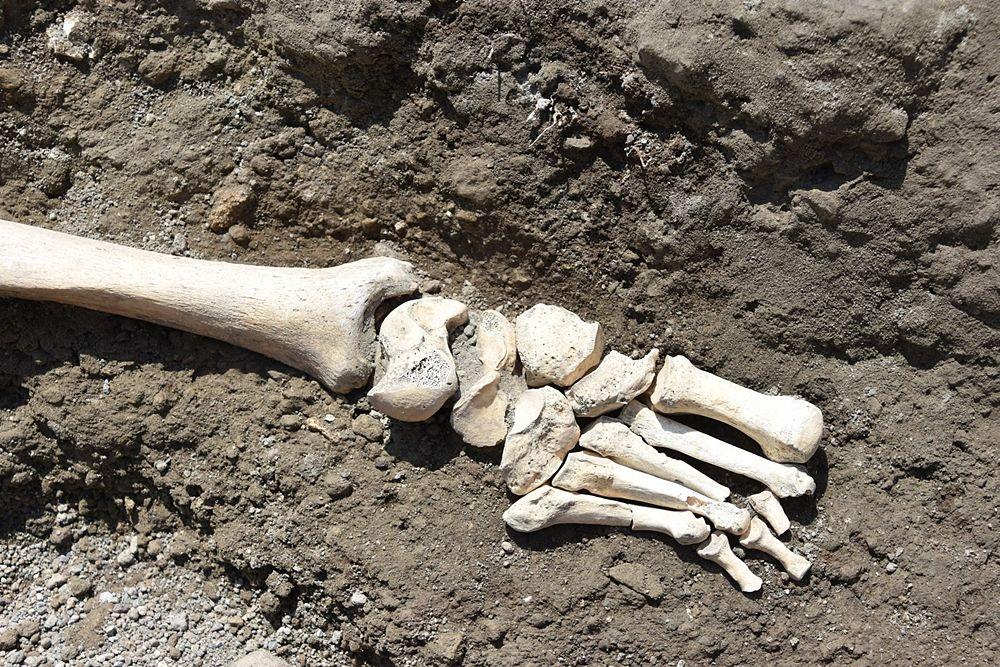 Scheletro ritrovato a Pompei