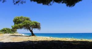 Lo splendore meridiano del Mar Jonio nelle parole di Norman Douglas e nelle immagini di Gianni Termine