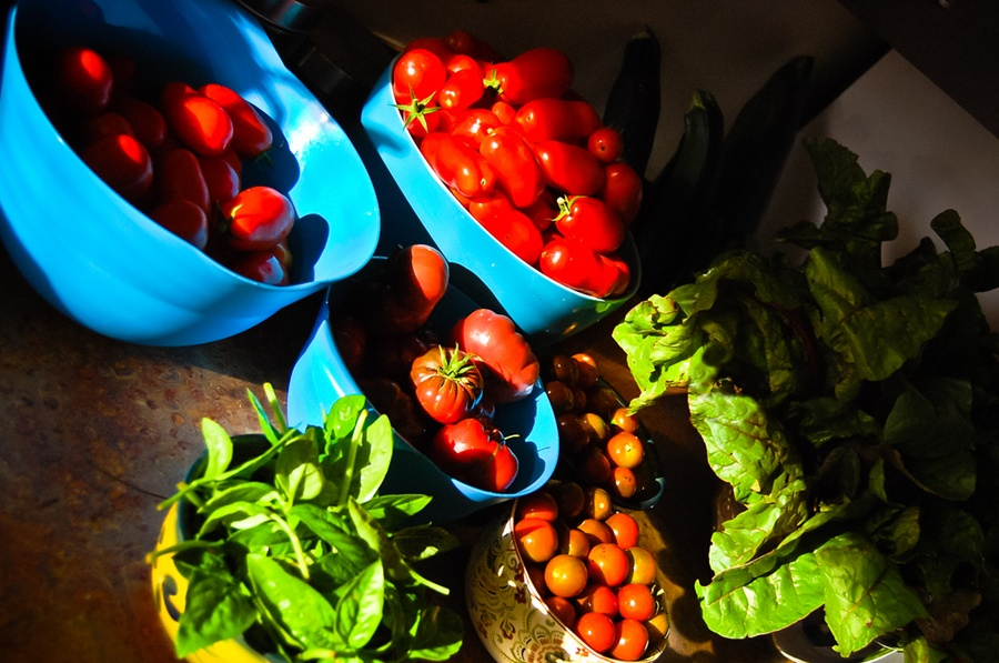 Tomatoes and basil, colors and scents of Southern Italy - Ph. Ryan Hide   CCBY-SA2.0