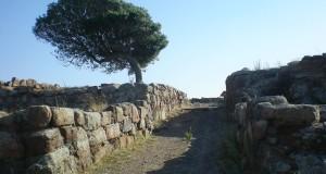 Il sito fenicio-punico di Monte Sirai, in Sardegna. Ultima scoperta: la tomba di una bambina del V secolo a.C.