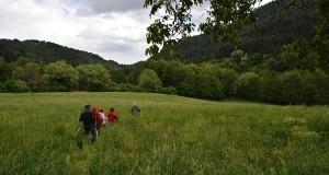 Il Cammino di Gioacchino: in Calabria nasce la rete di sentieri trekking ispirata all'abate profetico
