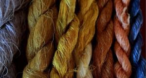 """""""Nido di seta"""", quando la crescita della Calabria passa dalle sue tradizioni millenarie"""