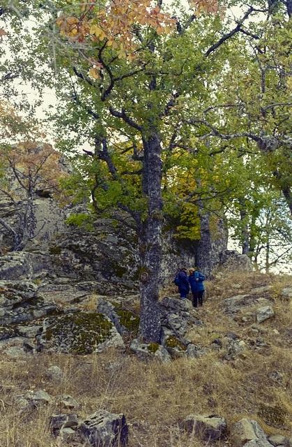 Massi erratici sulla cima del Monte Croccia, Oliveto Lucano (Mt) - Ph. Fiore S. Barbato | ccby-sa2.0