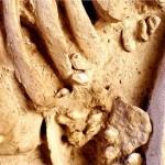 Eccezionale scoperta nel sud della Francia: da una tomba del Neolitico un arcaico esempio di Bio-fashion