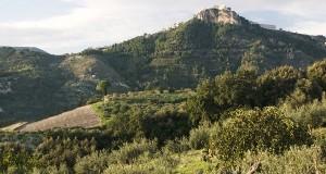 Con i suoi sei mila anni, passa alla terra di Sicilia il primato del vino più antico
