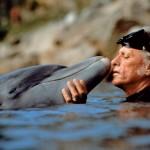 Richard O'Barry, guru della difesa dei delfini, approda a Taranto per un progetto di ricerca e sensibilizzazione