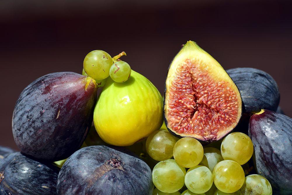 frutta_opt