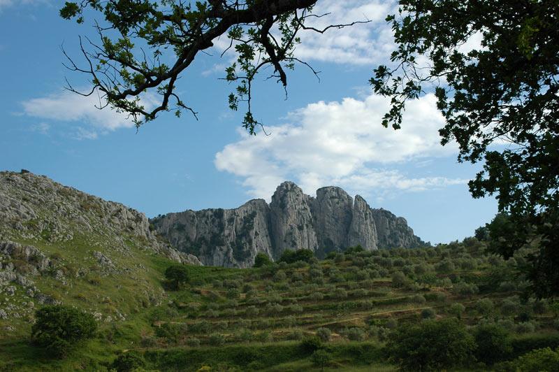 Rupi di Canolo (Dolomiti del Sud) - Image by Aspromonte National Park
