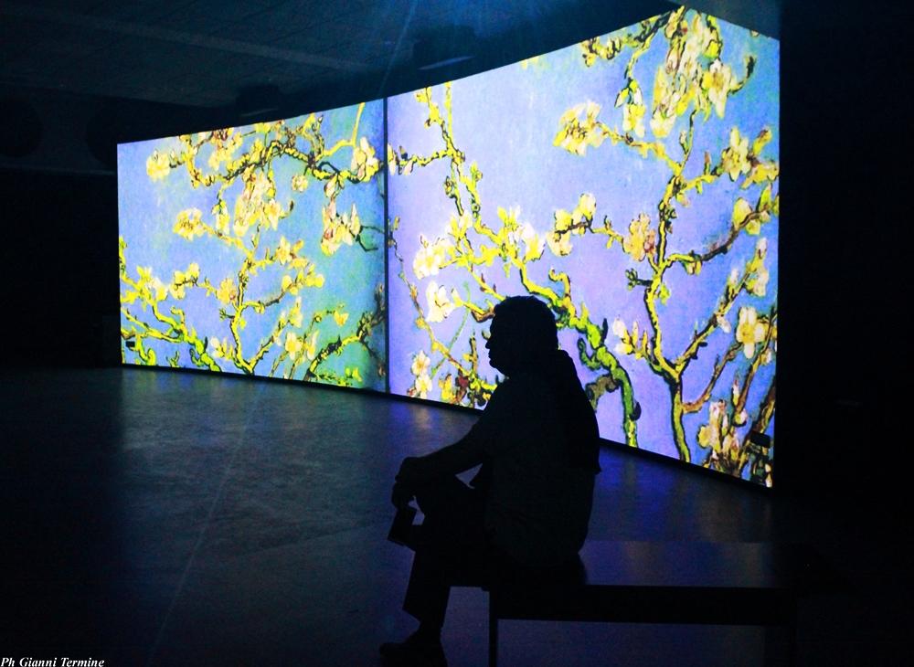Vincent Van Gogh, Ramo di mandorlo in fiore,