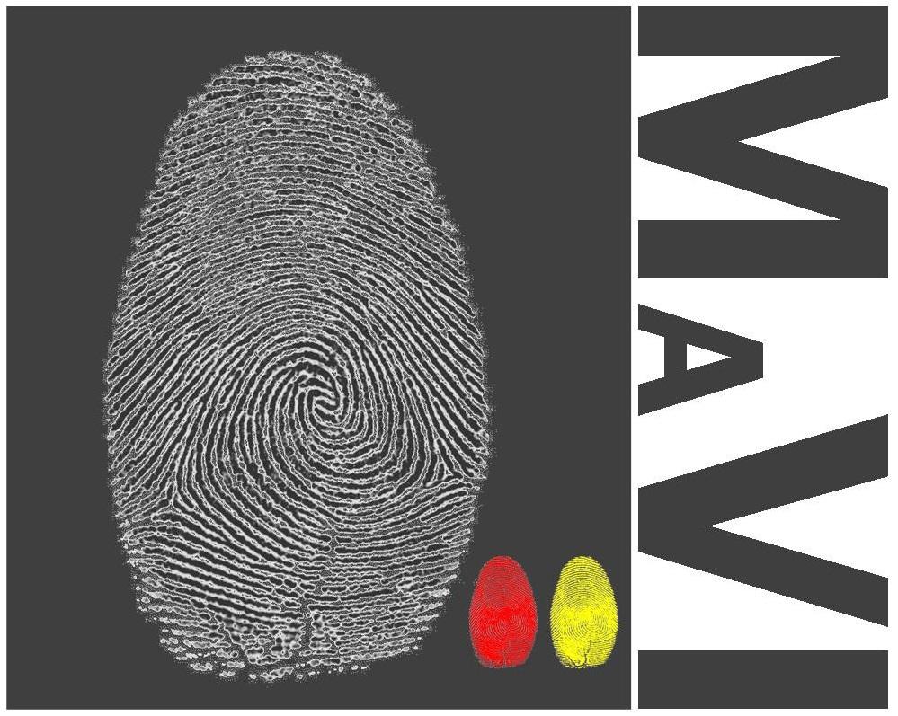MaVI (Museo all'Aperto di Villapiana)