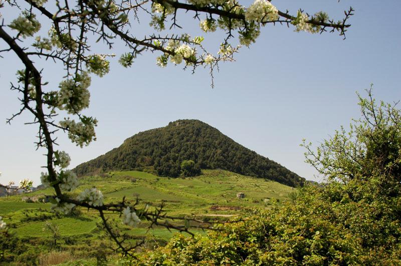 Monte Sant'Elia, Mammola (Reggio Calabria) - Image by Aspromonte National Park