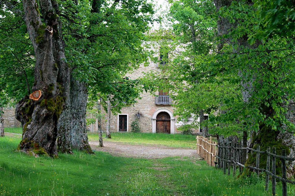 Scorcio della Tenuta Barracco, sede del parco letterario Old Calabria, Parco Nazionale della Sila – Ph. © Gianni Termine