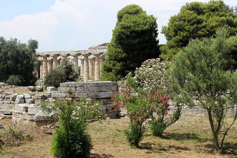 Scorcio del Tempio di Hera (c.d. Basilica) - Ph. Miguel Hermoso Questa | ccby-sa3.0