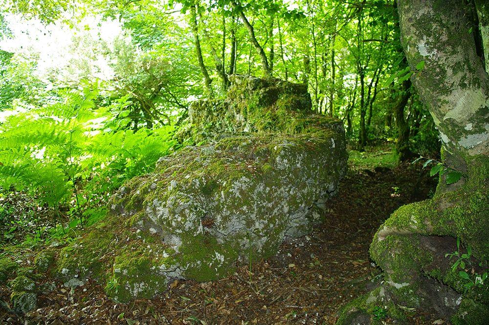 Tratto di fortificazione nei boschi dell'Aspromonte – Ph. © Lino Licari