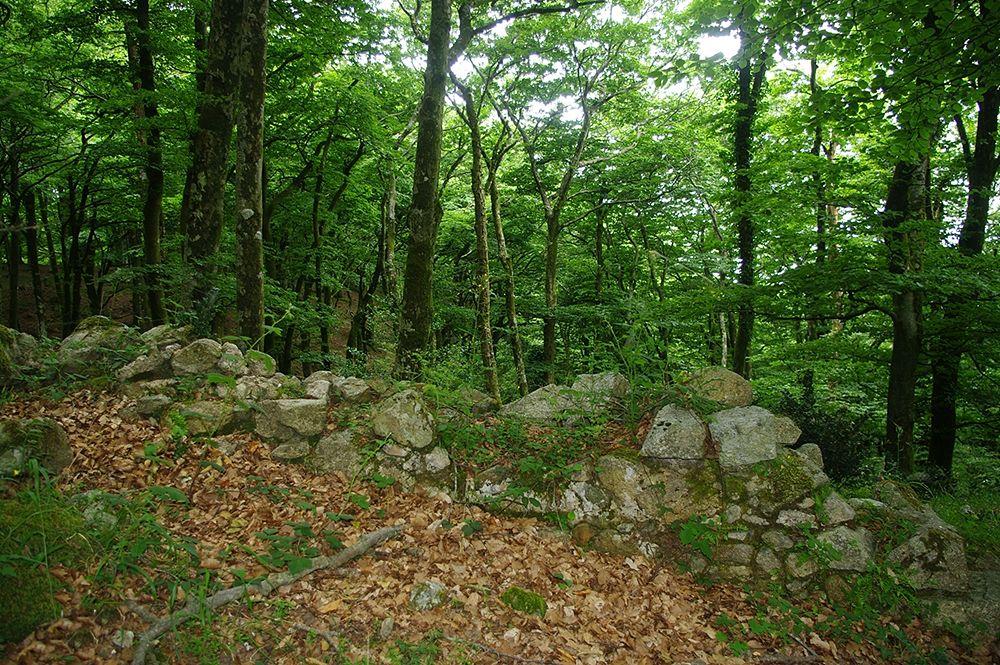 Ancora resti delle strutture difensive magno-greche – Ph. © Lino Licari