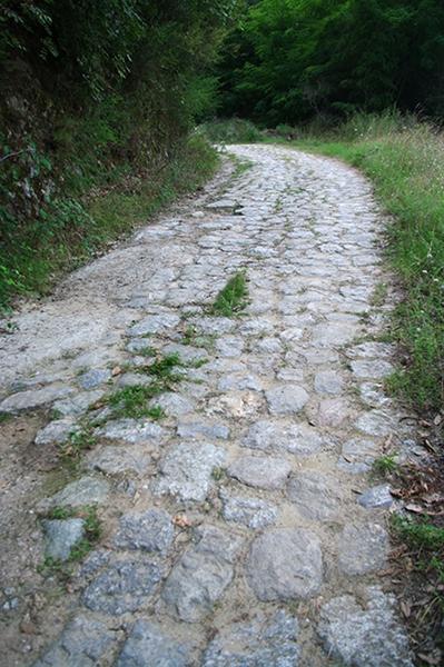 Un breve tratto della via Popilia – Ph. © Lino Licari