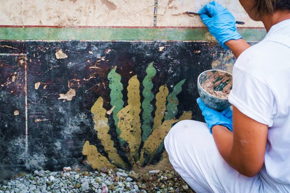 Affresco con motivo vegetale dalla Domus di Giove, II sec. a.C. - I sec. d.C., Pompei - Image by Parco Archeologico di Pompei' / Foto di Cesare Abbate