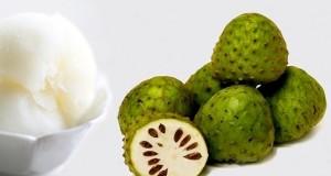 Annona cherimola: il frutto esotico di Reggio Calabria diventa un sorbetto