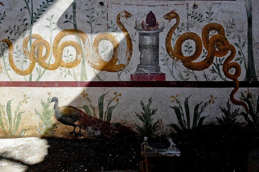 Il larario riemerso nella Regio V di Pomepei - Ph. © Ciro Fusco