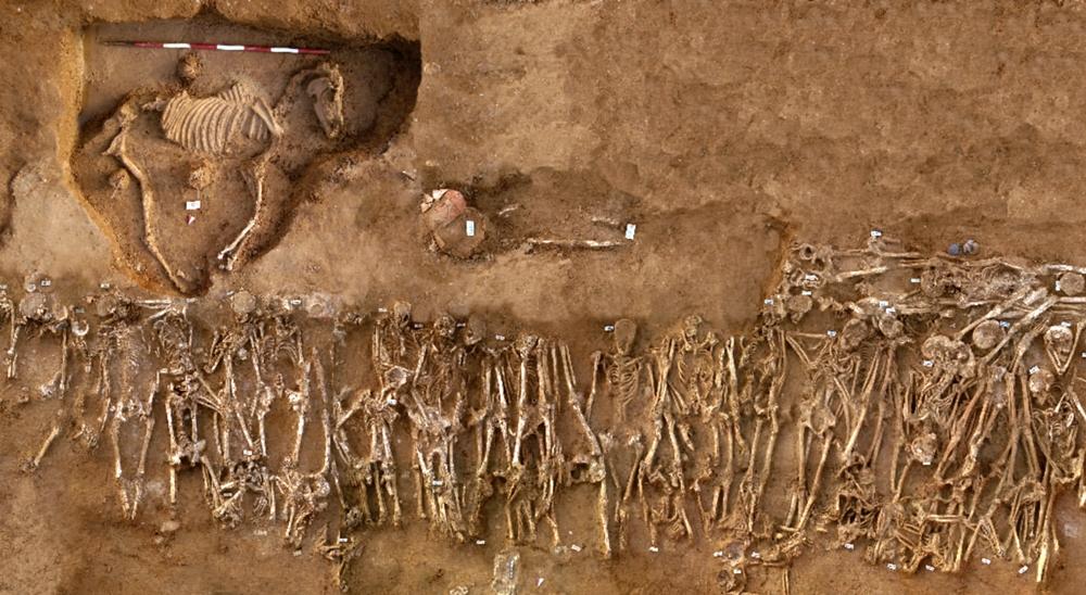 Fossa comune dei caduti della Battaglia di Himera del 409 a.C. e sepoltura di un cavallo - Image by Soprintendenza Archeologica della Sicilia