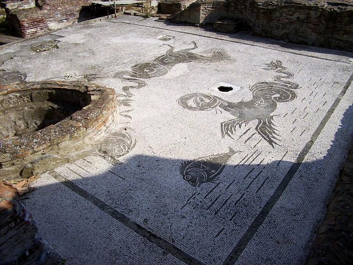 Pavimento a mosaico con  animali marini, Villa romana di P.ta S. Limato, II sec. d.C. | Fonte: Promozione Cellole