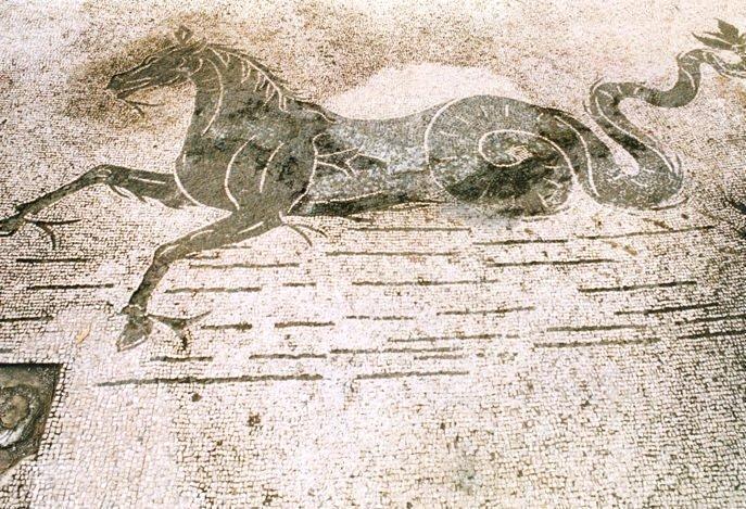Pavimento musivo con ippocampo, Villa di Tigellino, P.ta S. Limato