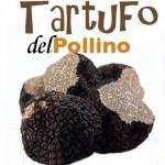 A Castrovillari si va a scuola di tartufi: una iniziativa senza precedenti in Calabria per valorizzare il 're' della tavola