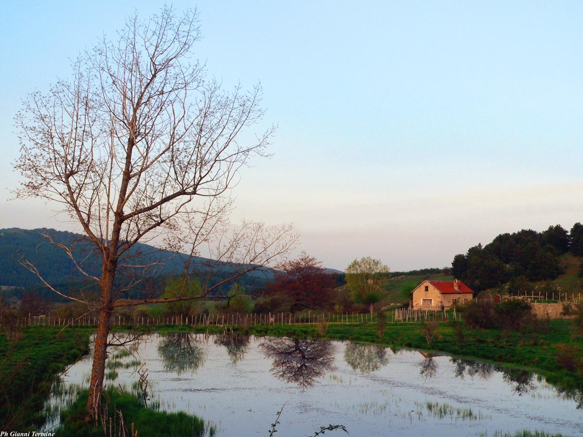 la piccola casa sul lago di gianni termine ForPlanimetrie Della Piccola Casa Sul Lago