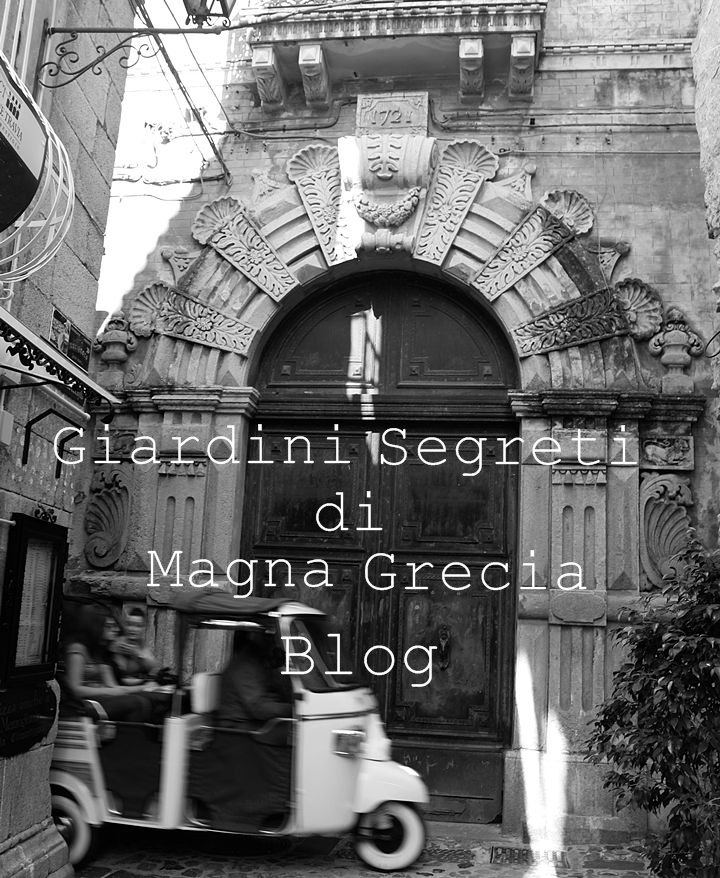 cover_blog_scriva