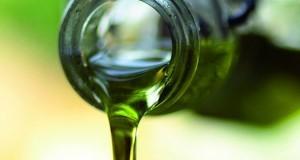 Ad Andria e Trani torna Frantoi Aperti per scoprire le eccellenze pugliesi dell'olio d'oliva