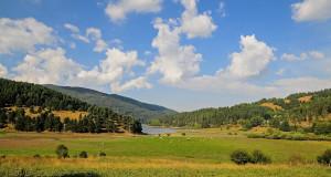 Parco Nazionale della Sila, preziosa oasi ecologica nel cuore della Calabria
