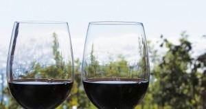 Dodici etichette abruzzesi fra i migliori vini d'Italia secondo VITAE, la Guida Vini 2015 pubblicata dall'AIS