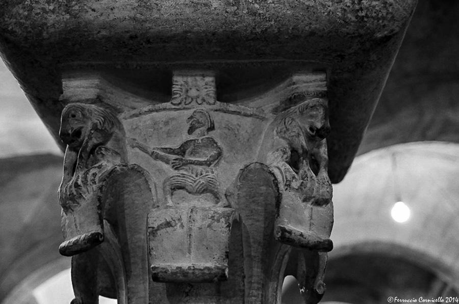 Cattedrale di Bitonto - 2