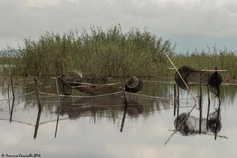 Il Lago di Lesina