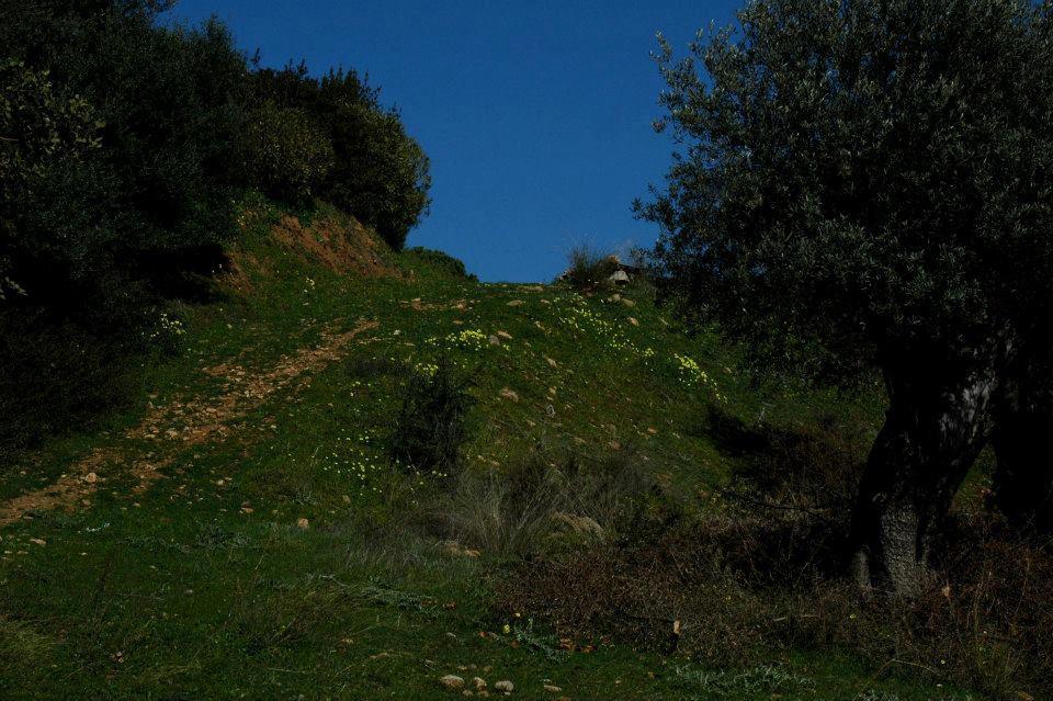Luoghi del Mito. Le colline di Amendolara e Trebisacce