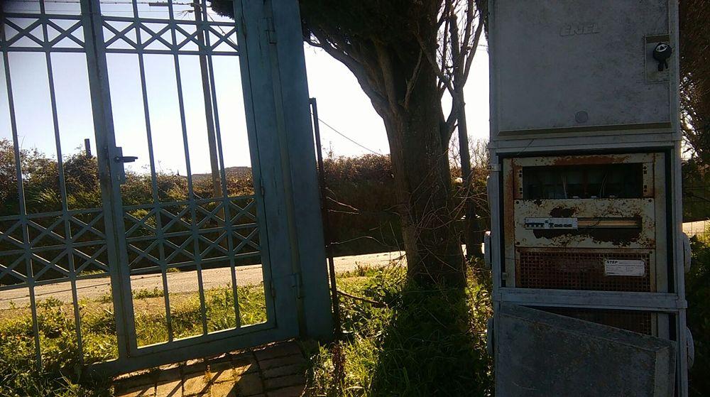 Mura Greche di Vibo Valentia: un patrimonio minacciato dal degrado