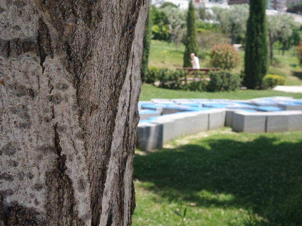 Parco della Biodiversità Mediterranea 1