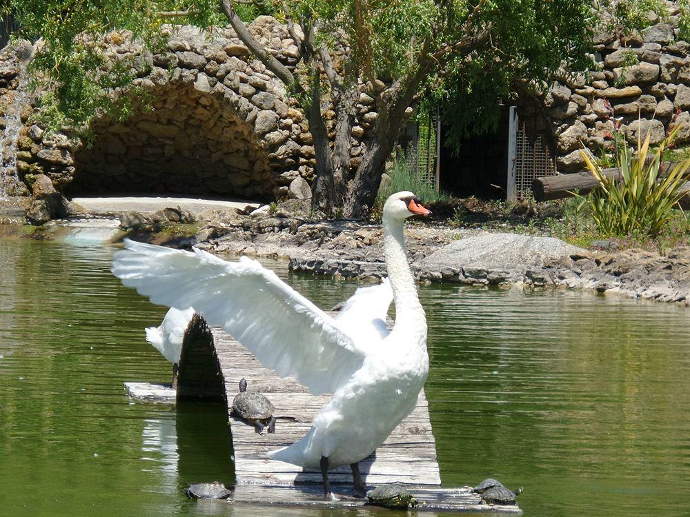 Parco della Biodiversità Mediterranea 2