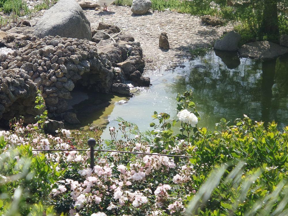 Parco della Biodiversità Mediterranea 3