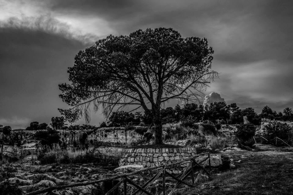 Sicilia, una terra sul magico confine fra luce e ombra, nelle immagini di Nicola Vigilanti - Siracusa