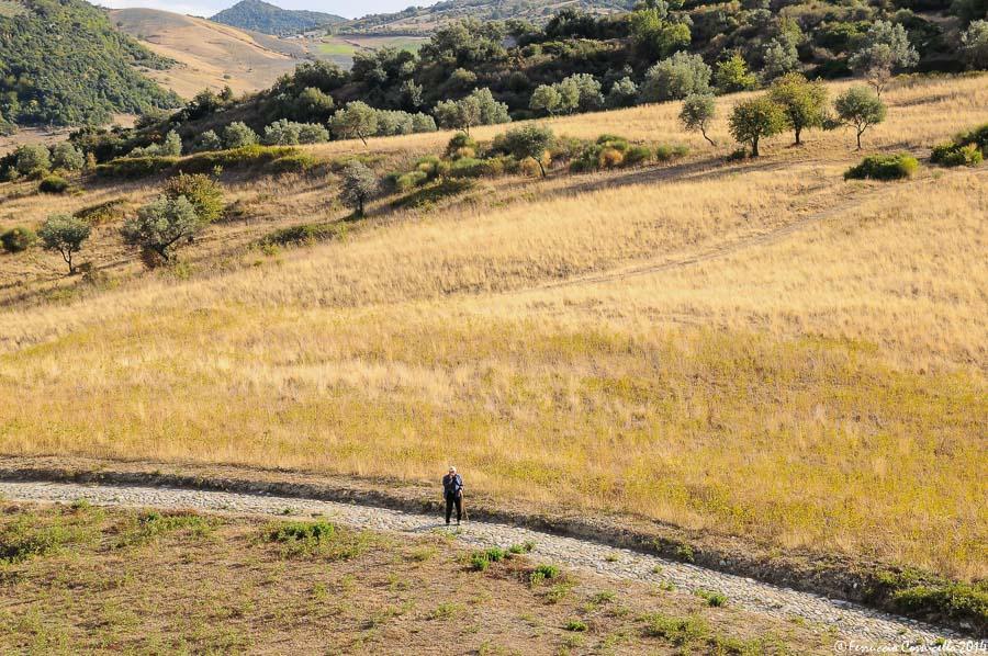 Viagigo nella calabria jonica: Castiglione di Paludi