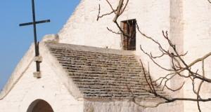 A spasso per l'Oasi protetta di Barsento, affascinante angolo di Puglia