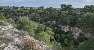 Itinerari a Sud | Tra natura e storia, escursioni nelle suggestive gravine dell'area jonica tarantina