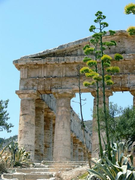 Tempio di Segesta - Image source