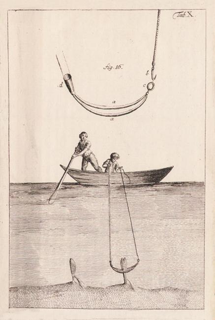 La pesca della pinna nobilis in un'incisione del '700