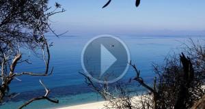 Racconta il tuo SUD | VIDEO – L'azzurro splendore di Parghelia nel video di CosiMali