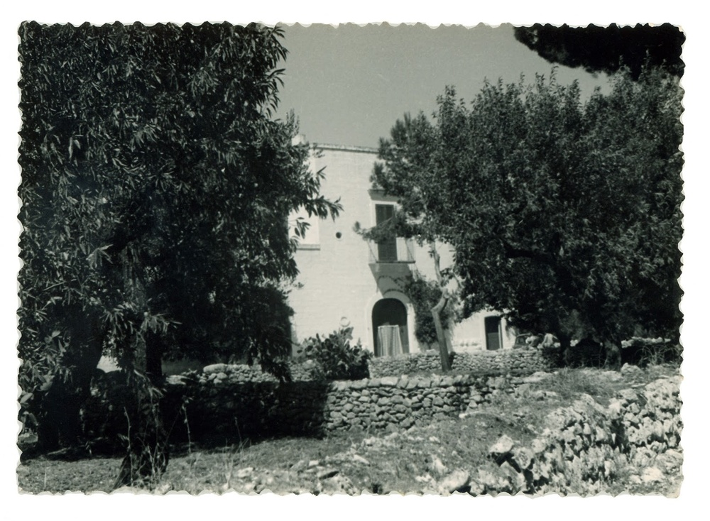 A vintage glimpse of our masseria Serra dell'Isola, in the countryside of Mola di Bari ... setting of many homemade tomato sauces...