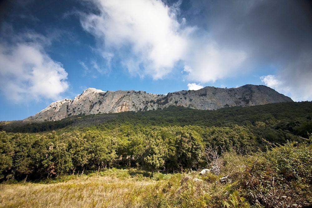Sicilia - Scorcio del Parco Naturale Regionale delle Madonie - Ph. Marek Lenik | CCBY-ND2.0
